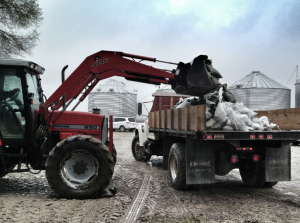 loading sandbags for river